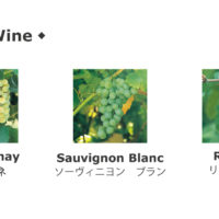flax_白ワイン品種